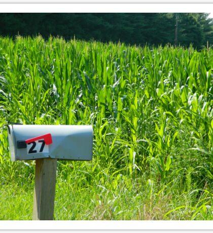 Corn Field     ^ Sticker