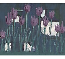 Tulips at Midnight Photographic Print