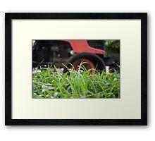 Big grass cutter Framed Print