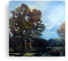 Kennesaw Mountain Battlefield Park Canvas Print