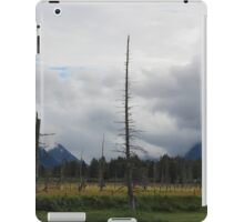 Dead Tree Splits the Valley iPad Case/Skin