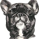French bulldog by Jellyscuds