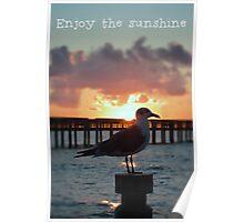 Enjoy the Sunshine Poster