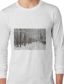 A Hike In The Winter Woods Long Sleeve T-Shirt