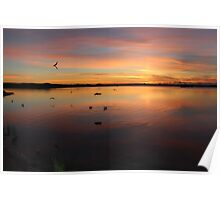 Scamander sunrise  #7125 over the lagoon Poster