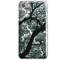 Trees in the Wild iPhone Case/Skin