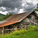 Old Coutry Barn by venny