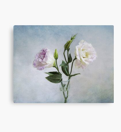 Lavender and White Anemones Still Life Canvas Print