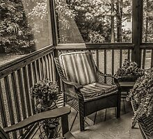 Sunroom Ray by Susan Nixon