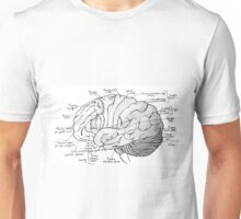 Labeled Brain Unisex T-Shirt