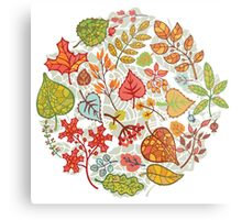 Circle composition with Autumn leaves,branches,berries Metal Print