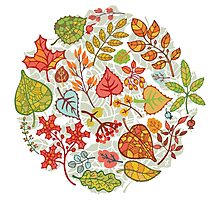 Circle composition with Autumn leaves,branches,berries Photographic Print