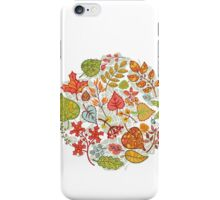 Circle composition with Autumn leaves,branches,berries iPhone Case/Skin