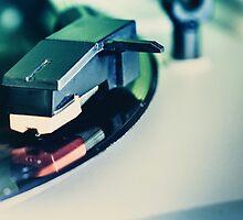 Vinyl Junkie by StephenRphoto