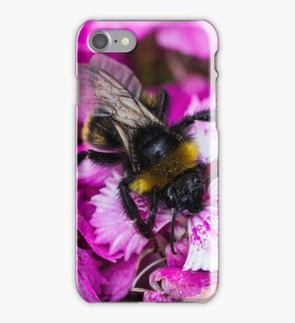 Forage iPhone Case/Skin