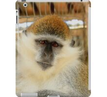 Wise Monkey - Nature Photography iPad Case/Skin