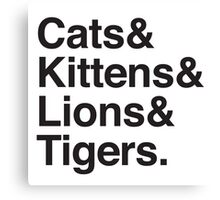 cats & kittens & lions & Tigers Canvas Print