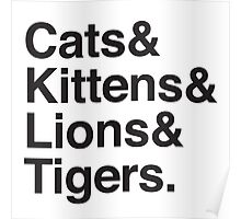 cats & kittens & lions & Tigers Poster