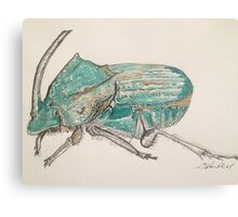 Rainbow Scarab Beetle in colour by Liz H Lovell Canvas Print
