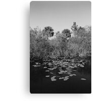 Everglades canal Canvas Print