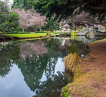 Botanic Gardens of Queenstown by Adrian Alford Photography