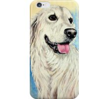 Argenta iPhone Case/Skin