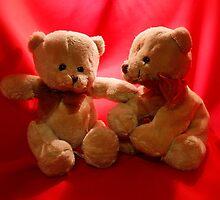 Twin Teddies by AnnDixon