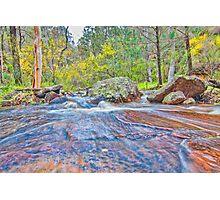 Springtime Creek Photographic Print