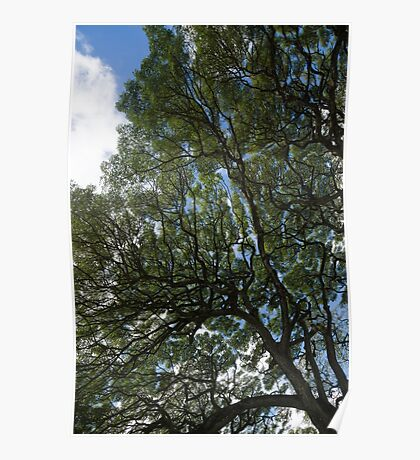 The Intricate Natural Canopy - Vertical Poster