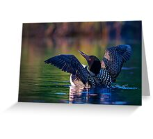 Rise 'n shine - Common loon Greeting Card