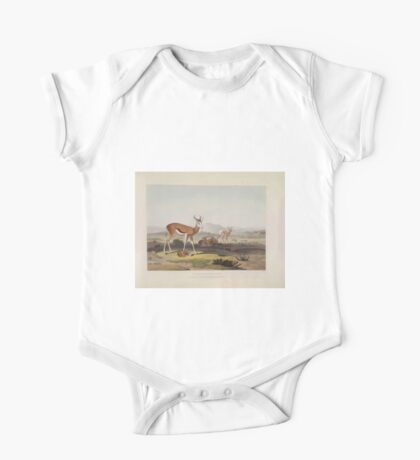 African Scenery and Animals Samuel and William Daniell 1804 0057 The Springbok or Leaping Antelope_jpg One Piece - Short Sleeve