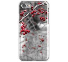 Winter Berries of Arrowtown iPhone Case/Skin
