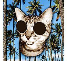 Cool Cat Photographic Print