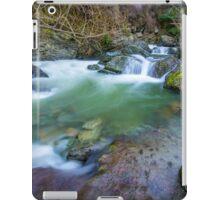 Roaring Meg iPad Case/Skin