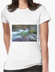 Roaring Meg Womens Fitted T-Shirt