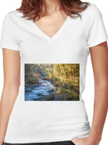 Afternoon Delight in Paradise Women's Fitted V-Neck T-Shirt