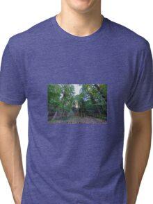 Sunburst Tri-blend T-Shirt