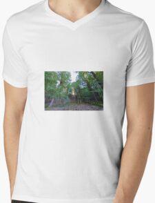 Sunburst Mens V-Neck T-Shirt