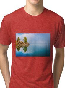 Pine Reflection Tri-blend T-Shirt
