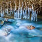 Ice Forms by Adrian Alford Photography