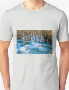 Ice Forms Unisex T-Shirt