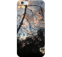 Sunset Office Reflections iPhone Case/Skin