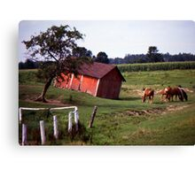 Barn with Horses Canvas Print