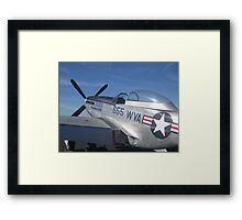Silver Fighter Framed Print