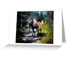 nova scotia #40 Greeting Card