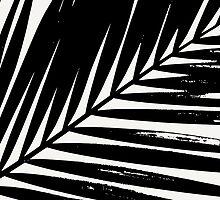 Palm Leaf Silhouette by Iveta Angelova