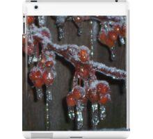 On Ice iPad Case/Skin