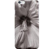 Rose Mallow Bloom iPhone Case/Skin