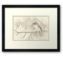 Flycatcher sumi-e Framed Print