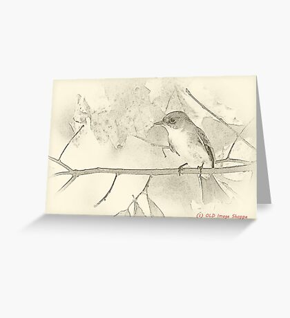 Flycatcher sumi-e Greeting Card